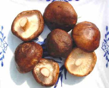 Nấm hương làm tăng hương vị cho món Mực xào